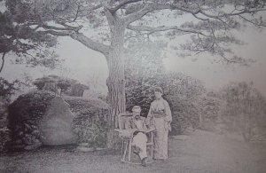 japonica03.jpg